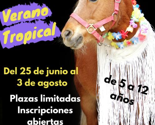 verano casal caballos niños niñas hipica